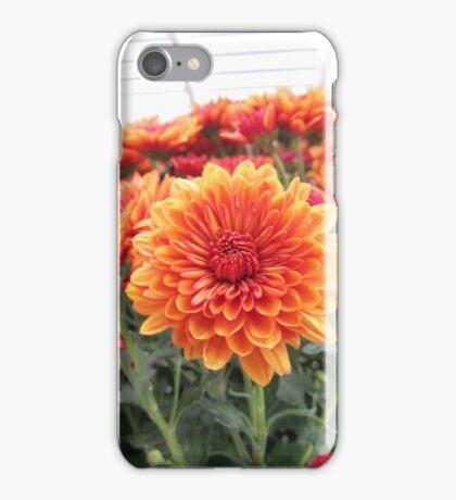 Fiery Flower iPhone Case/Skin