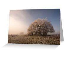 Misty Morn Greeting Card