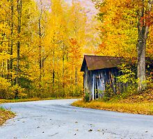 Autumn Road by Greg Booher