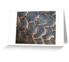 Pangolin Scales Greeting Card