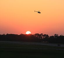 Sunset Flight by paulvive