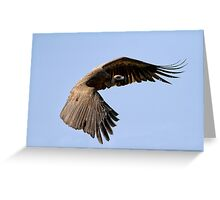 I Am Much Better Looking In Flight Greeting Card