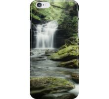 Big Falls (iPhone Case) iPhone Case/Skin