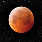 Celestial Series: Eclipse by Mary Ann Reilly