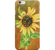 Proven Light iPhone Case iPhone Case/Skin
