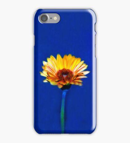 Daisy Doze  [iPhone Case] iPhone Case/Skin