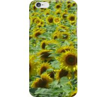 iPhone Case ~ CT Sunflower Field iPhone Case/Skin