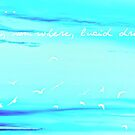 Birds..... by chili