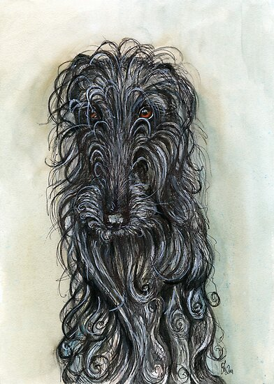 """Having a bad hair day"" by Elle J Wilson"