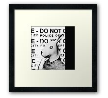 Land of No Rules Framed Print