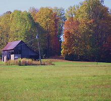 OLD BARNS FROM THE MIDWEST by Pauline Evans