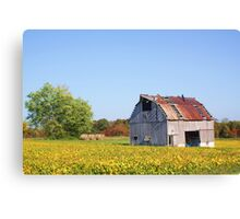 AN OLD WHITE BARN IN THE KNOBS Canvas Print