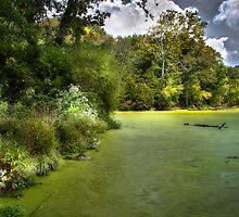 Radnar Lake by Chris Diebold