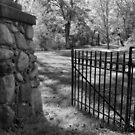 Gate at Oak Grove Cemetery by jrier