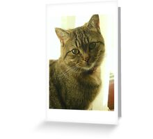 Did you get my good side? Greeting Card