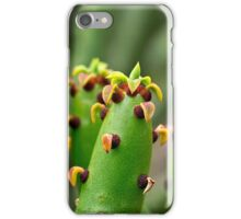 Madagascar euphorbia iPhone Case/Skin