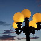 Night Light by Barbara Gerstner