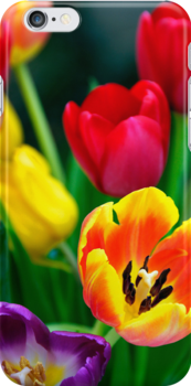 iphone case Tulips by buttonpresser
