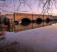 Ross Bridge by gmws