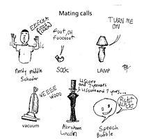 Mating Calls Photographic Print