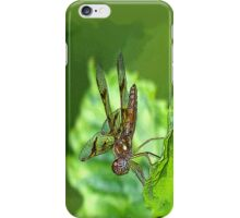 Amberwing (iPhone Case) iPhone Case/Skin