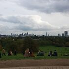 A View from Primrose Hill by Steven Mace