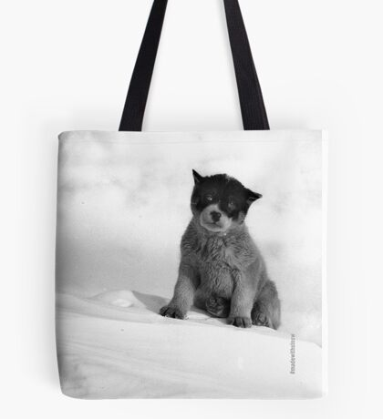 Blizzard, the pup in Antarctica  Tote Bag