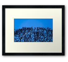 Organic Growth 02 Framed Print