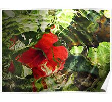 Hibiscus Ripple Poster
