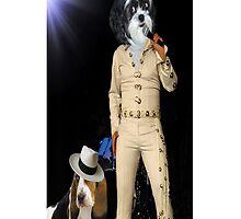 ♫ ♬ ♪ Singing U Ain't Nothin But A Hound Dog iPhone Case  ♫ ♬ ♪ by ✿✿ Bonita ✿✿ ђєℓℓσ