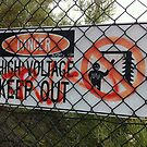 High Voltage by Bento by TheLazyAussie