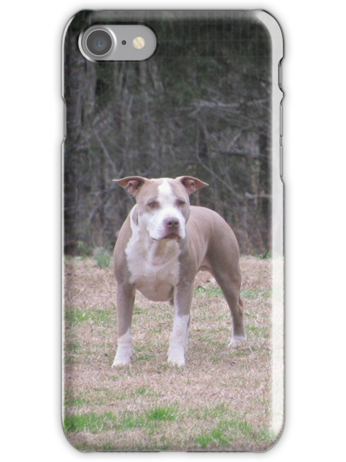 APBT iPhone Case - Buster by Ginny York