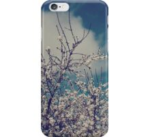 I Want to Always Feel This Way iPhone Case iPhone Case/Skin