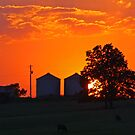 Sunset over the Farm by Susan Blevins