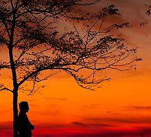 SUNSET SHADES by konerusunil