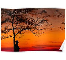 SUNSET SHADES Poster