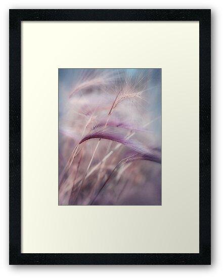 whispers in the wind by Priska Wettstein
