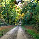 The Road To Fall by Geno Rugh