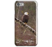 Skagit River Bald Eagle (Small) iPhone case. iPhone Case/Skin