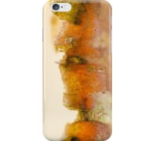 The Glow of Peeling Bark iPhone Case/Skin