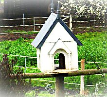 Little Bird House on side of Horse yard. by EdsMum