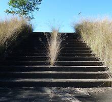 Stairway to heaven, Scheyville Army Camp by DashTravels