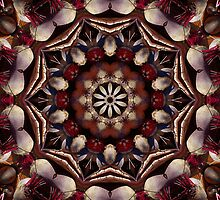 The BEET goes on mandala by rvjames