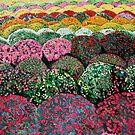 Sea of Chrysanthemums by Nira Dabush