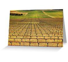 Ferngrove Vineyard Greeting Card
