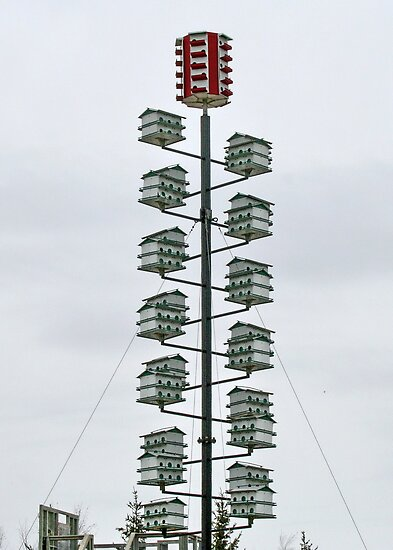 High Rise Birdhouse with Penthouse Suite by AnnDixon