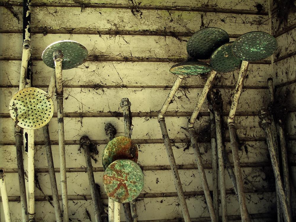 rusty showerheads by joshua75