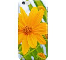 Vivid yellow flower iPhone Case/Skin