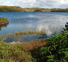 Kiltooris Lough by WatscapePhoto