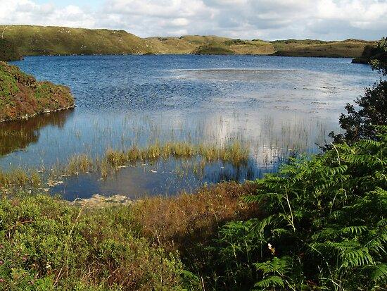 Kiltooris Lough by WatscapePhoto